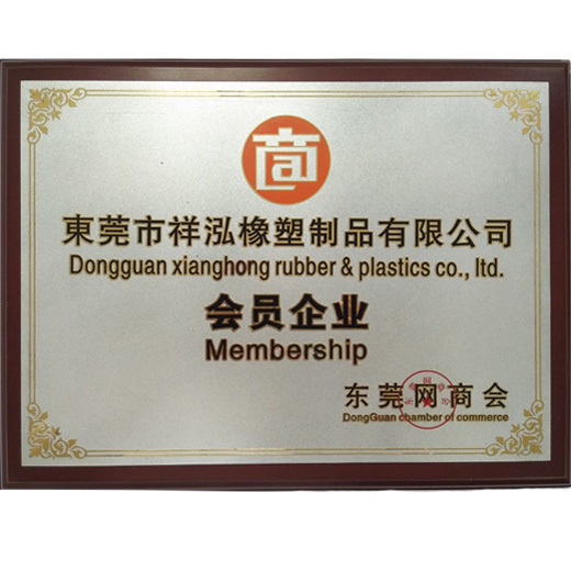 Member of Dongguan net chamber of Commerce